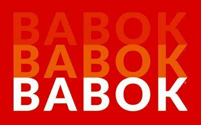 ساختار راهنمای babok چگونه است؟
